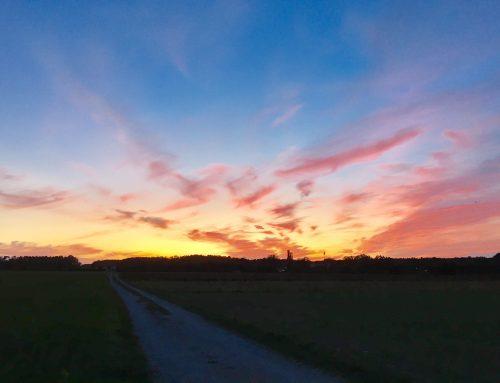 Der Himmel glüht im Westen über Kosbach
